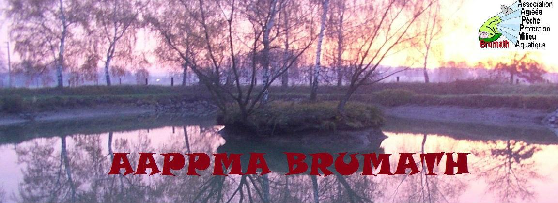 aappma brumath peche